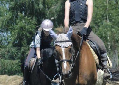 oboz-konie-2015-6-0137