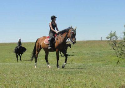 oboz-konie-2015-6-0145