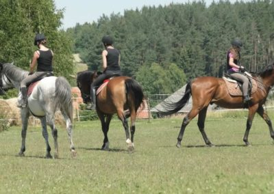 oboz-konie-2015-6-0150