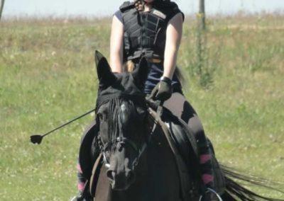 oboz-konie-2015-6-0154