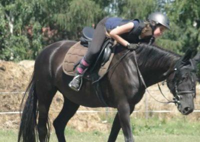 oboz-konie-2015-6-0163