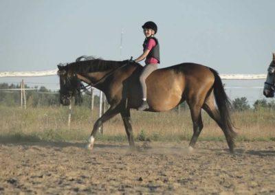 oboz-konie-2015-6-0179