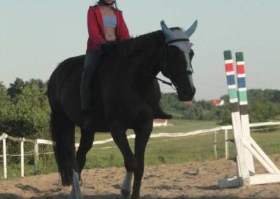 oboz-konie-2015-6-0189