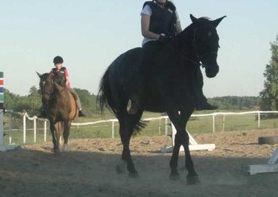 oboz-konie-2015-6-0192
