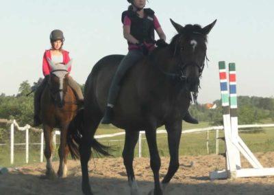 oboz-konie-2015-6-0193