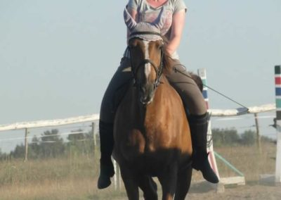 oboz-konie-2015-6-0201