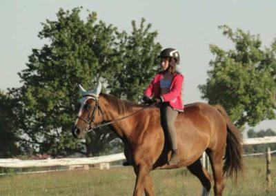 oboz-konie-2015-6-0206