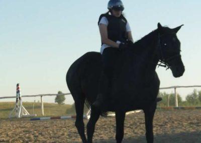 oboz-konie-2015-6-0210