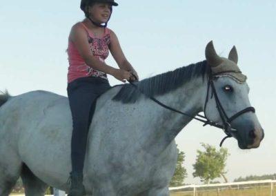 oboz-konie-2015-6-0211