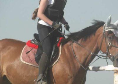 oboz-konie-2015-7-0002