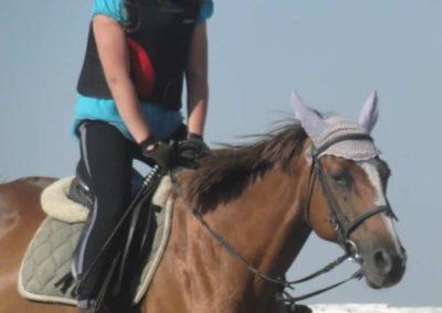 oboz-konie-2015-7-0004