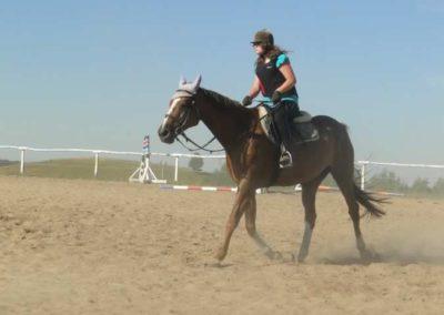 oboz-konie-2015-7-0005