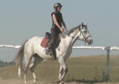 oboz-konie-2015-7-0006