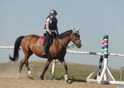 oboz-konie-2015-7-0013