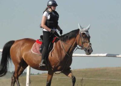 oboz-konie-2015-7-0017