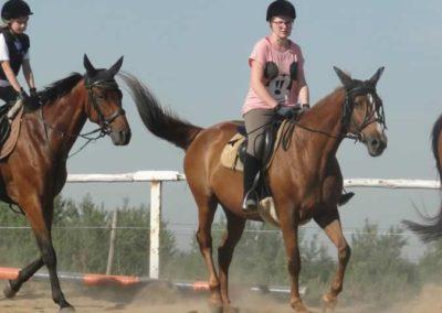 oboz-konie-2015-7-0022