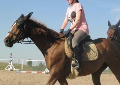 oboz-konie-2015-7-0023