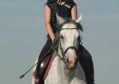 oboz-konie-2015-7-0024