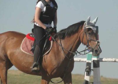 oboz-konie-2015-7-0025
