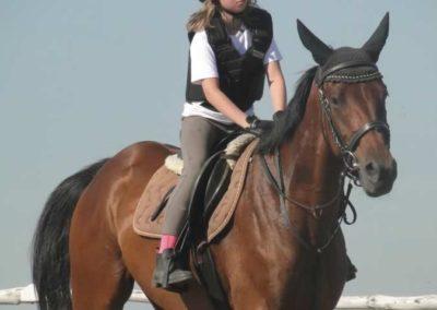 oboz-konie-2015-7-0026