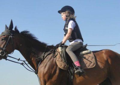 oboz-konie-2015-7-0036