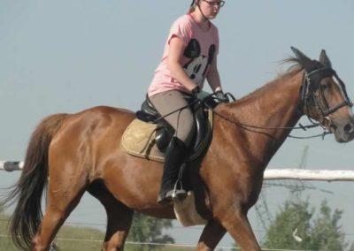 oboz-konie-2015-7-0041