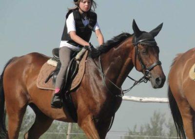 oboz-konie-2015-7-0042