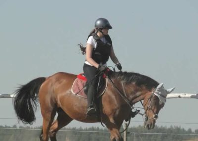 oboz-konie-2015-7-0043