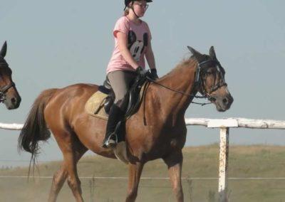 oboz-konie-2015-7-0044