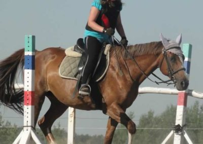 oboz-konie-2015-7-0046