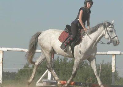oboz-konie-2015-7-0048