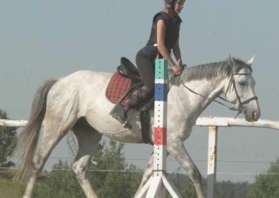 oboz-konie-2015-7-0053