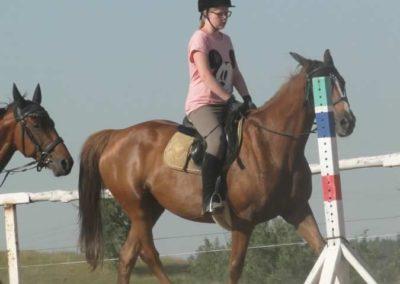 oboz-konie-2015-7-0054