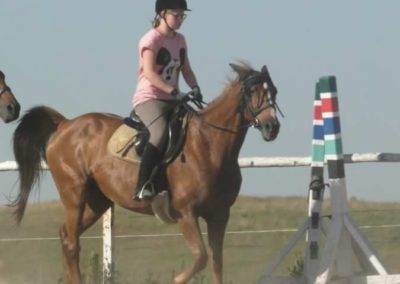 oboz-konie-2015-7-0055