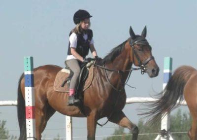 oboz-konie-2015-7-0056