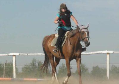 oboz-konie-2015-7-0057