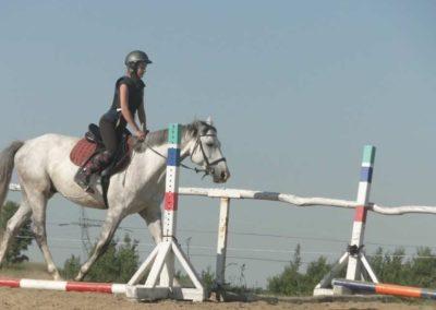 oboz-konie-2015-7-0062