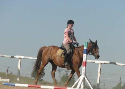 oboz-konie-2015-7-0064
