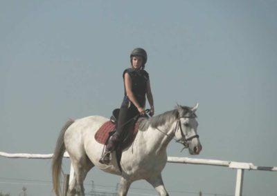 oboz-konie-2015-7-0067