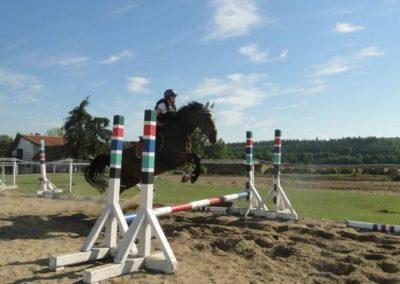 oboz-konie-2015-7-0077