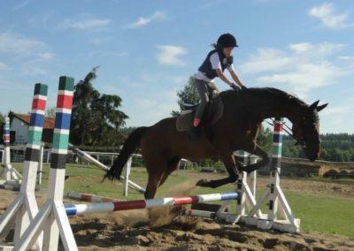oboz-konie-2015-7-0078