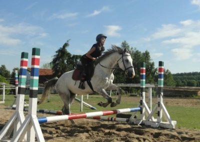 oboz-konie-2015-7-0079