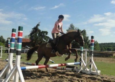 oboz-konie-2015-7-0080