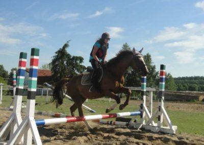 oboz-konie-2015-7-0081