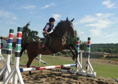 oboz-konie-2015-7-0082