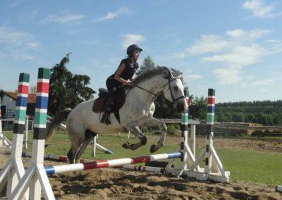 oboz-konie-2015-7-0083