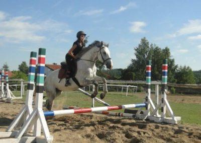oboz-konie-2015-7-0085