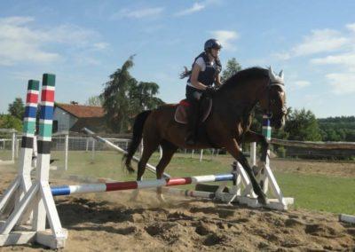oboz-konie-2015-7-0086