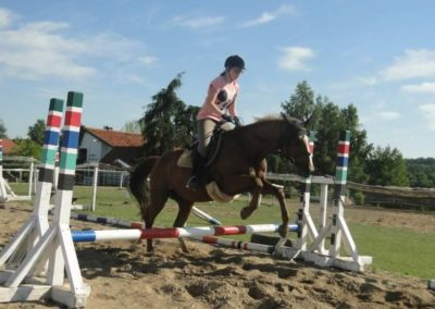 oboz-konie-2015-7-0087