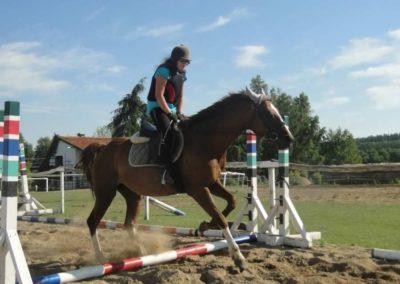 oboz-konie-2015-7-0088